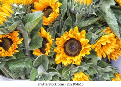 bunch of sunflowers at market
