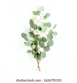 A bunch of twigs green eucalyptus  and leaves isolated on white background. lay flat, top view