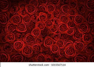 A bunch of Valentines Red Roses background