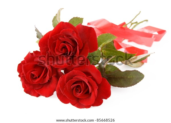 Bunch of velvet red roses with bow isolated on white