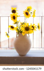 a bunch of vibrant potted sunflowers into a warm and cozy living room