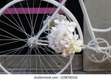 Bunch of white flowers on the pedal of a bicycicle.