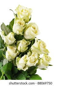 bunch of white roses  isolated on white background