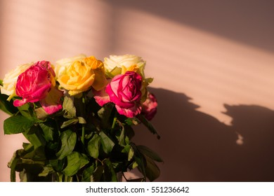 Bunch of wilted flowers, deadhead roses with shadows