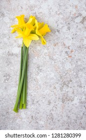 Bunch of yellow daffodil flowers on stone background with copy space