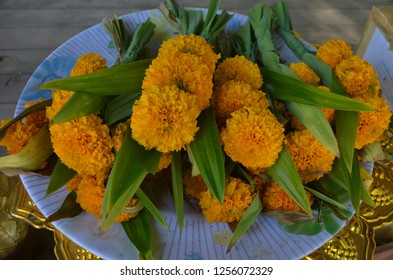 A bunch of yellow marigold with panda leaves tied together prepared in a plate on a golden worshiping tray as offering flowers for the Lord Buddha at the temple
