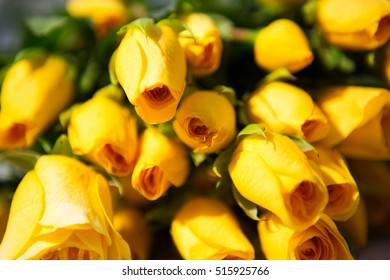 Bunch of yellow roses, selective focus, close up