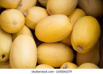 Bunch of yellow spaghetti squash in bin at farmers market