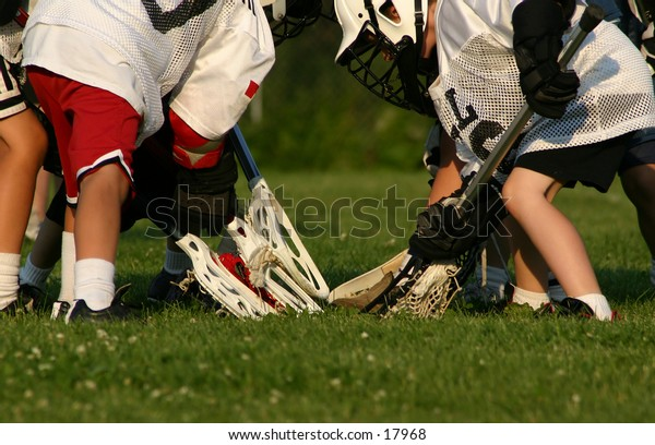 A bunch of young lacrosse players going for the ball.
