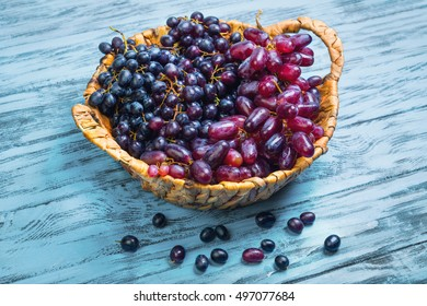 Bunches of blue purple grape small and large different varieties. Basket of grapes. Grapes on blue background wooden table.