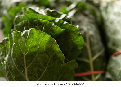 Bunches of fresh collard greens at a farmers market in Raleigh North Carolina