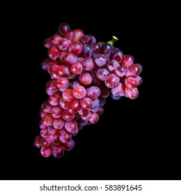 Bunches of fresh ripe red grap on black background with clipping path. Ancient style, a beautiful background with a branch of blue grap. Red wine grapes. dark grapes, blue grapes,