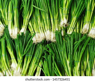 bunches of green onion in store for sale