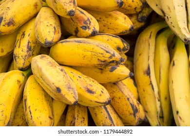 Bunches of ripe yellow bananas stacked in a pile at an outdoor farmers market for tropical fruit in Rio de Janeiro Brazil