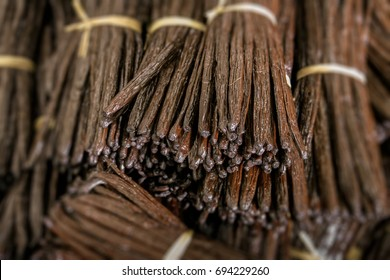 Bunches of Vanilla beans from Madagascar