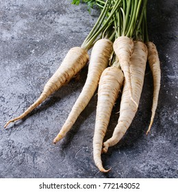Bundle of fresh organic parsnip with haulm over gray texture background. Square image