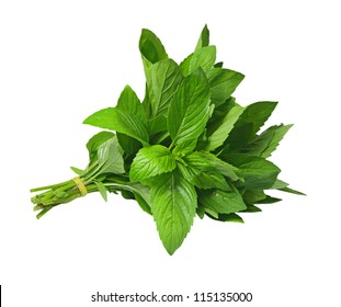 Bundle of fresh spear mint isolated on white