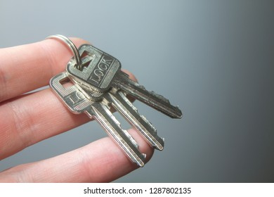 A bundle of keys on a keyring in a man's hand.