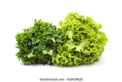 bundle of lettuce isolated on a white background