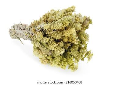 bundle of mountain tea isolated on white