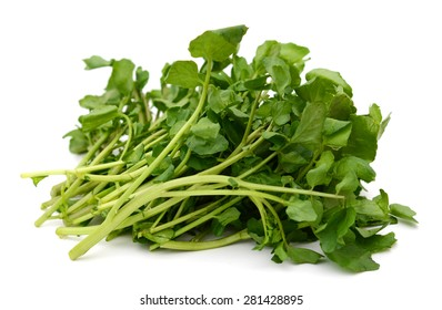 bundle of watercress on white background