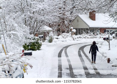 A bundled up woman walks her dog along a snowy neighborhood street