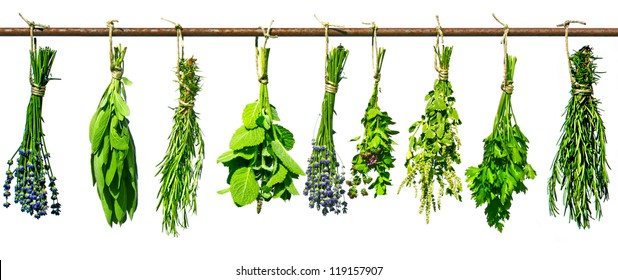 bundles of different herbs hanging to dry on a rusty iron rod