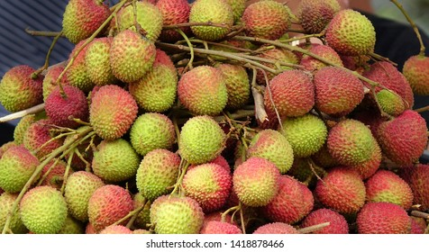 Bundles of fresh lychee fruit are sold at an outdoor market