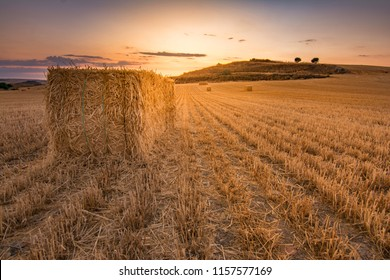 Bundles of straw in a dry field during the summer of Castilla in Spain - Shutterstock ID 1157577169