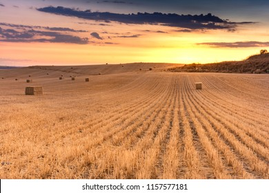 Bundles of straw in a dry field during the summer of Castilla in Spain - Shutterstock ID 1157577181