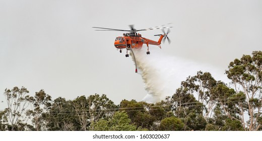 Bundoora, Australia - December 30, 2019: Erickson Air Crane helicopter (Sikorsky S-64) N243AC dropping a large load of water onto a bushfire in support of fire fighting efforts by crews on the ground.