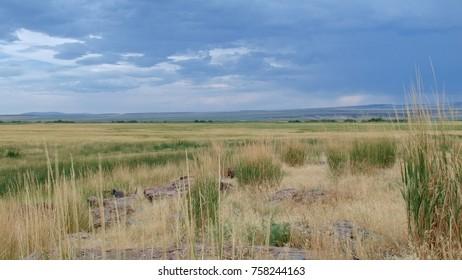 Malheur National Wildlife Refuge Images, Stock Photos