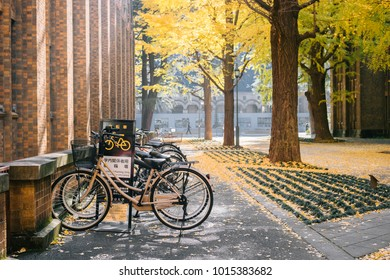 Bunkyo,Tokyo/Japan - November 29 2017: Bicycle parking lot and Ginkgo yellow leaves at the road in front of the famous clock tower of the University of Tokyo called 'Yasuda Auditorium'