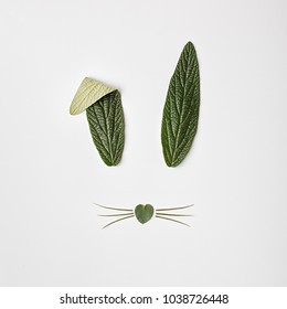 Bunny rabbit face made of green leaves on white background. Easter concept. Flat lay.