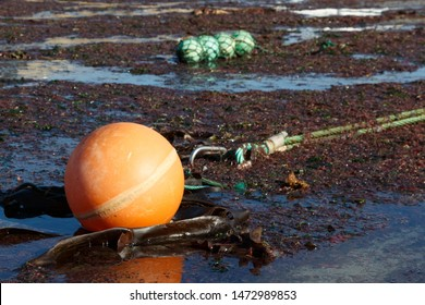 Buoy and rope on the sand for boat mooring