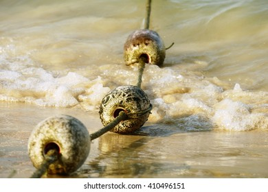 buoyancy on beach