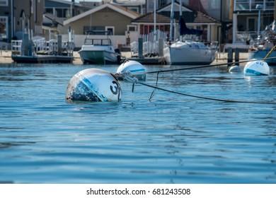 Buoys in Harbor