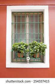 Burano window