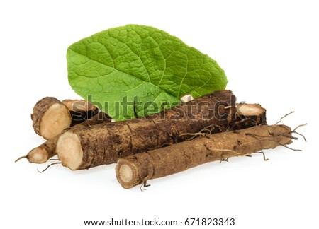 Burdock roots isolated on white background