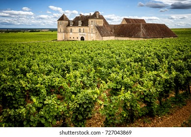 Burgundy, Clos de Vougeot. July 7, 2017. Even though the Chateau du Clos de Vougeot does not produce wine anymore, it stays the symbol of a millenary of Burgundy's History. France