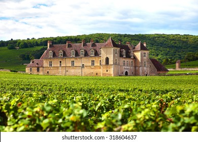 Burgundy, France - September 10, 2013: Landscape view of a typical sunlit vineyard in Burgundy, France with Chateau Clos Du Vougeot, stone walls and hills in the background
