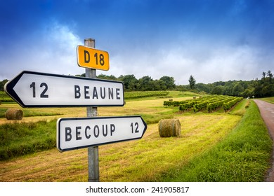Burgundy. Wine French country road signs leading to the top burgundy vineyards. France