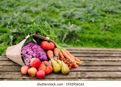 burlap bag filled with vegetables and fruits in a crop field, healthy eating and ecological agriculture concept, copy space for text