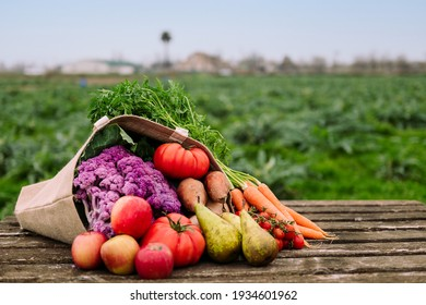 burlap bag filled with vegetables and fruits in a crop field, healthy eating and organic agriculture concept, copy space for text