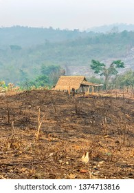Burned field with shack in countryside of Laos.