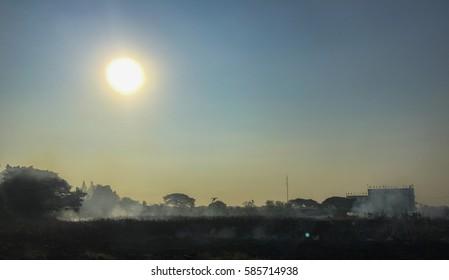 Burned field under the savage sun