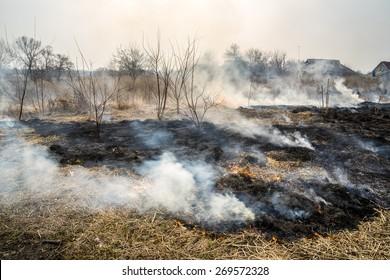 Burned grass near the village.