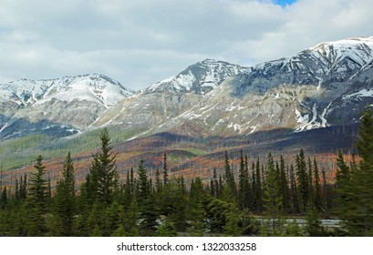 Burned hills of Kootenay Valley - Kootenay National Park, Alberta, Canada