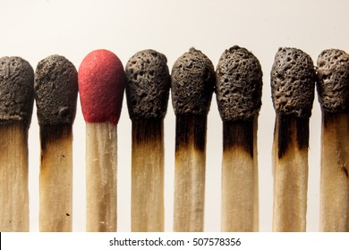 Burned matches around a clean one.