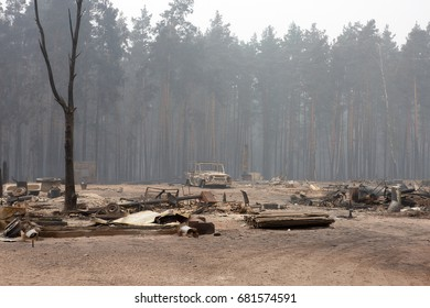 The burned-out village. Forest fires.